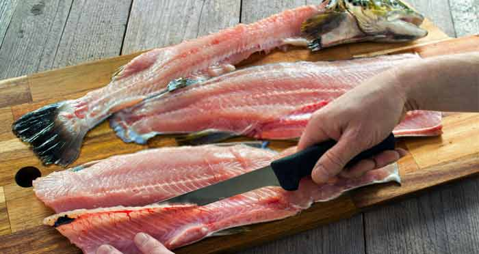 filleting-knife