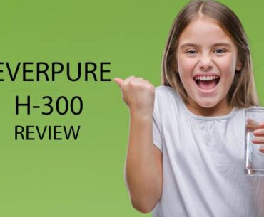 Everpure H300 Reviews in 2020
