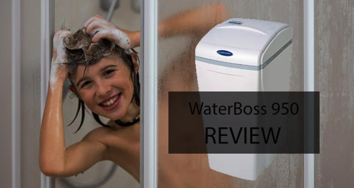 WaterBoss 950 Reviews in 2020